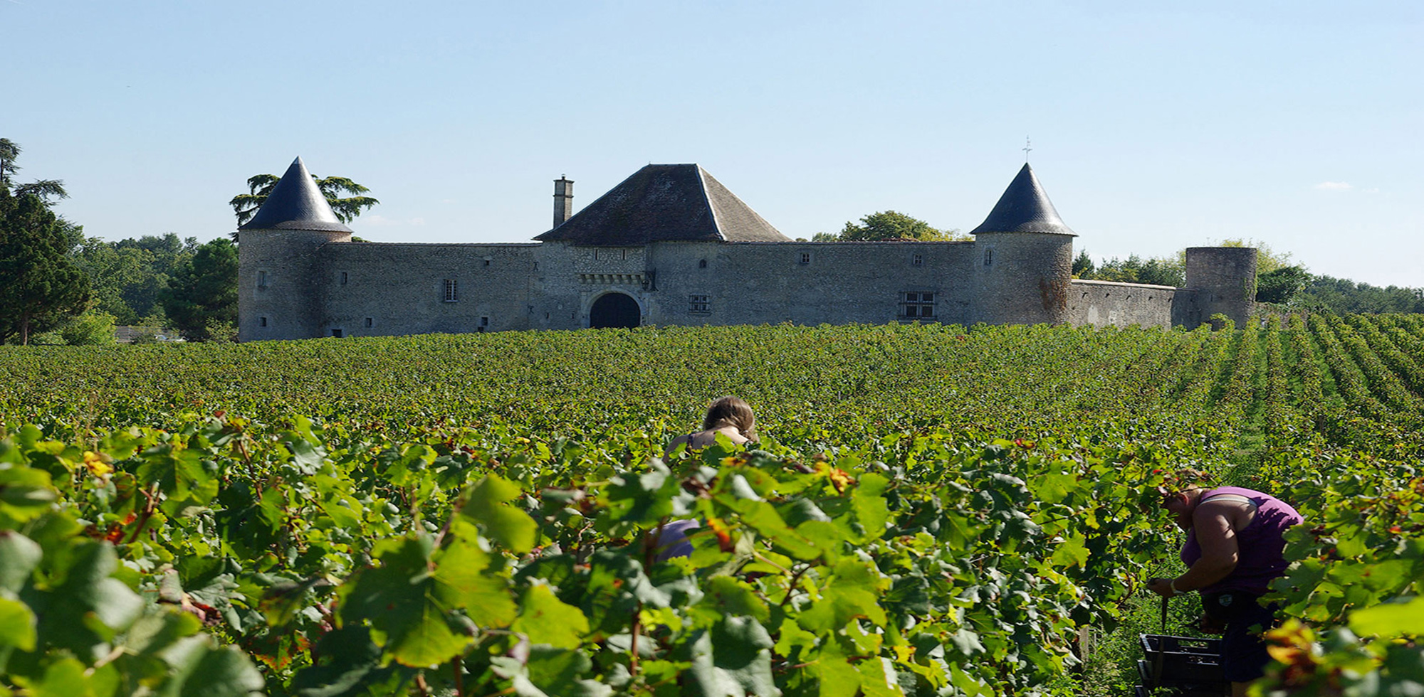 Week-end Vignoble